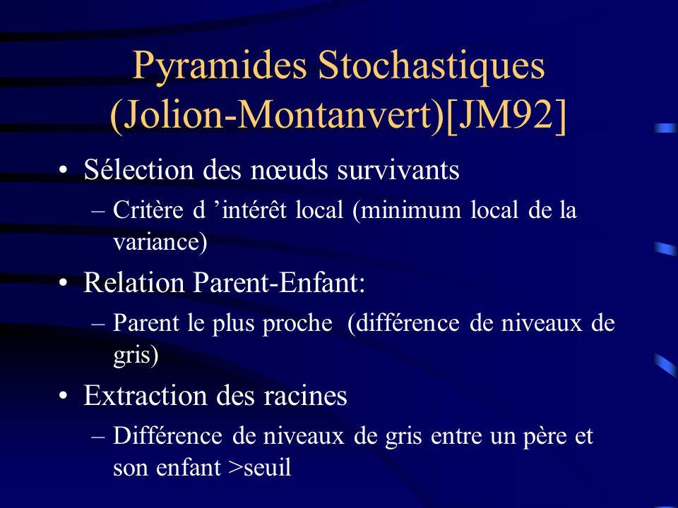 Pyramides Stochastiques (Jolion-Montanvert)[JM92] Sélection des nœuds survivants –Critère d intérêt local (minimum local de la variance) Relation Parent-Enfant: –Parent le plus proche (différence de niveaux de gris) Extraction des racines –Différence de niveaux de gris entre un père et son enfant >seuil