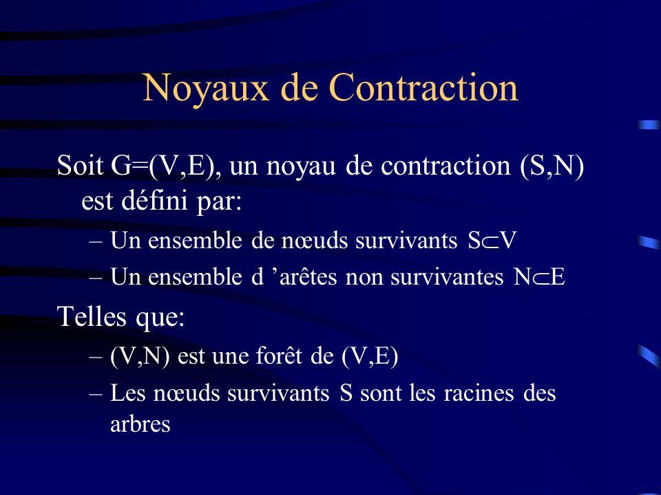 Noyaux de Contraction Soit G=(V,E), un noyau de contraction (S,N) est défini par: –Un ensemble de nœuds survivants S V –Un ensemble d arêtes non survivantes N E Telles que: –(V,N) est une forêt de (V,E) –Les nœuds survivants S sont les racines des arbres