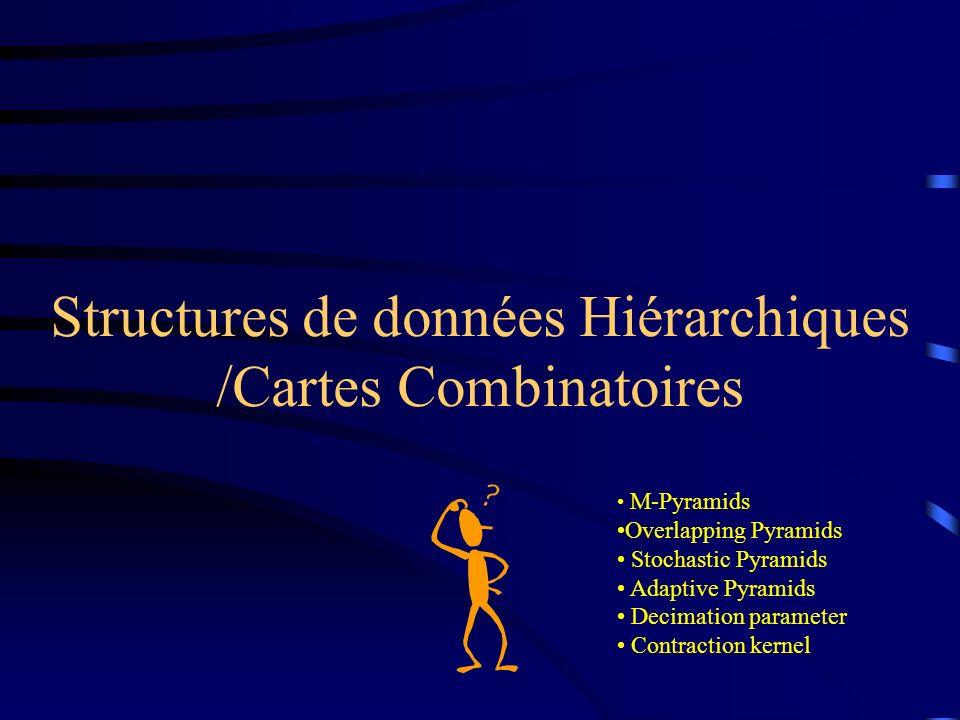 Structures de données Hiérarchiques /Cartes Combinatoires M-Pyramids Overlapping Pyramids Stochastic Pyramids Adaptive Pyramids Decimation parameter Contraction kernel