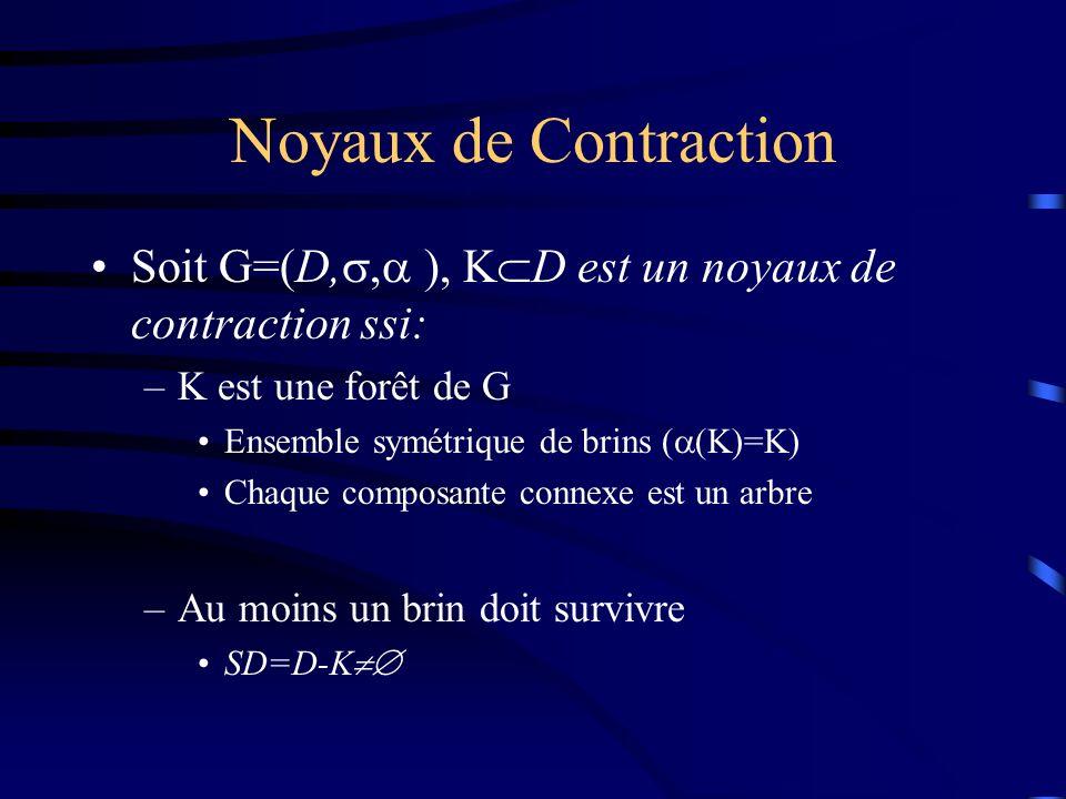 Noyaux de Contraction Soit G=(D,, ), K D est un noyaux de contraction ssi: –K est une forêt de G Ensemble symétrique de brins ( (K)=K) Chaque composante connexe est un arbre –Au moins un brin doit survivre SD=D-K
