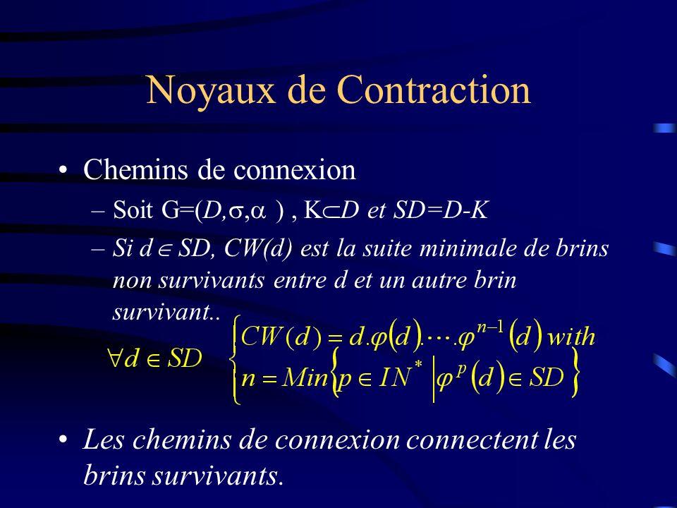 Noyaux de Contraction Chemins de connexion –Soit G=(D,, ), K D et SD=D-K –Si d SD, CW(d) est la suite minimale de brins non survivants entre d et un autre brin survivant..