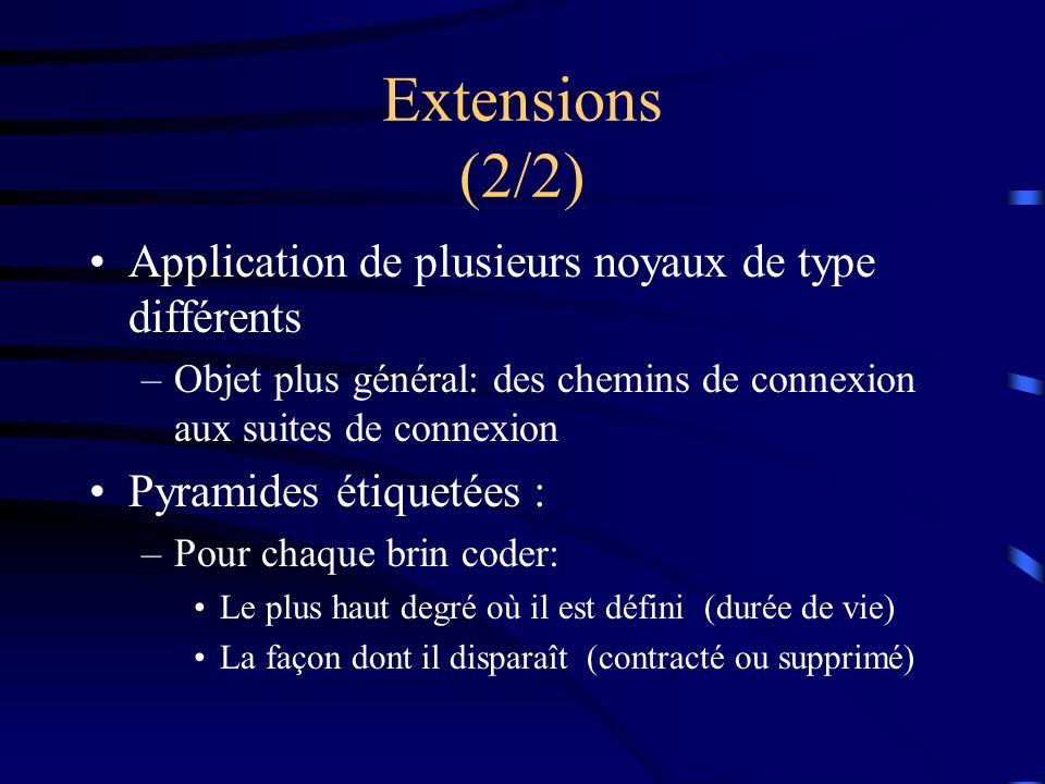 Extensions (2/2) Application de plusieurs noyaux de type différents –Objet plus général: des chemins de connexion aux suites de connexion Pyramides étiquetées : –Pour chaque brin coder: Le plus haut degré où il est défini (durée de vie) La façon dont il disparaît (contracté ou supprimé)