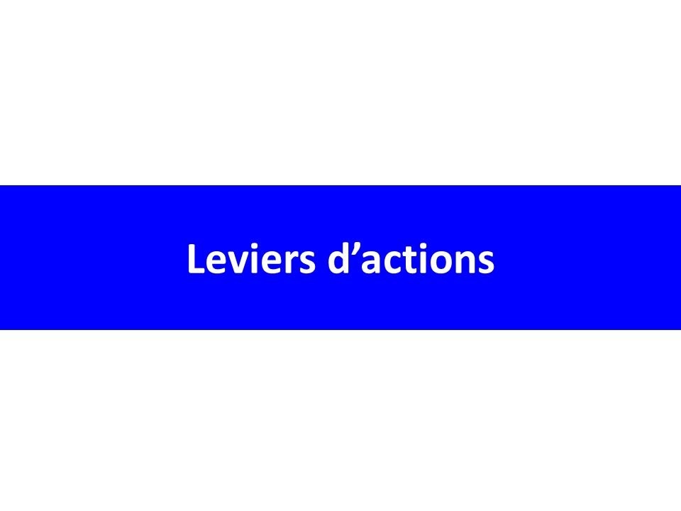 Leviers dactions
