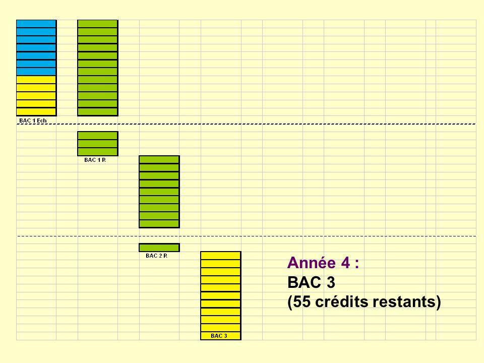 Année 4 : BAC 3 (55 crédits restants)