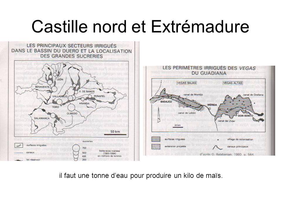 Castille nord et Extrémadure il faut une tonne deau pour produire un kilo de maïs.