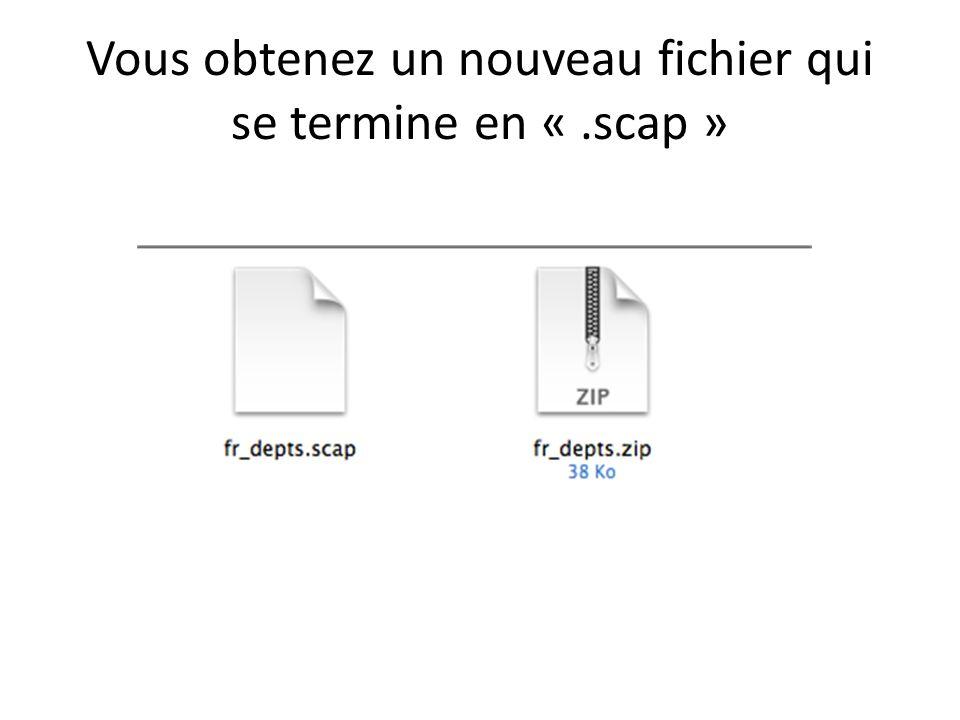 Vous obtenez un nouveau fichier qui se termine en «.scap »