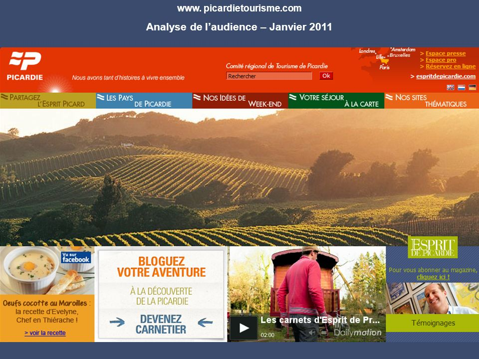 www. picardietourisme.com Analyse de laudience – Janvier 2011