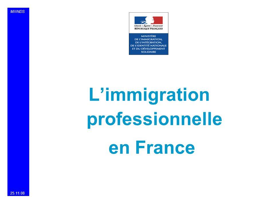 MIIINDS Limmigration professionnelle en France 25.11.08