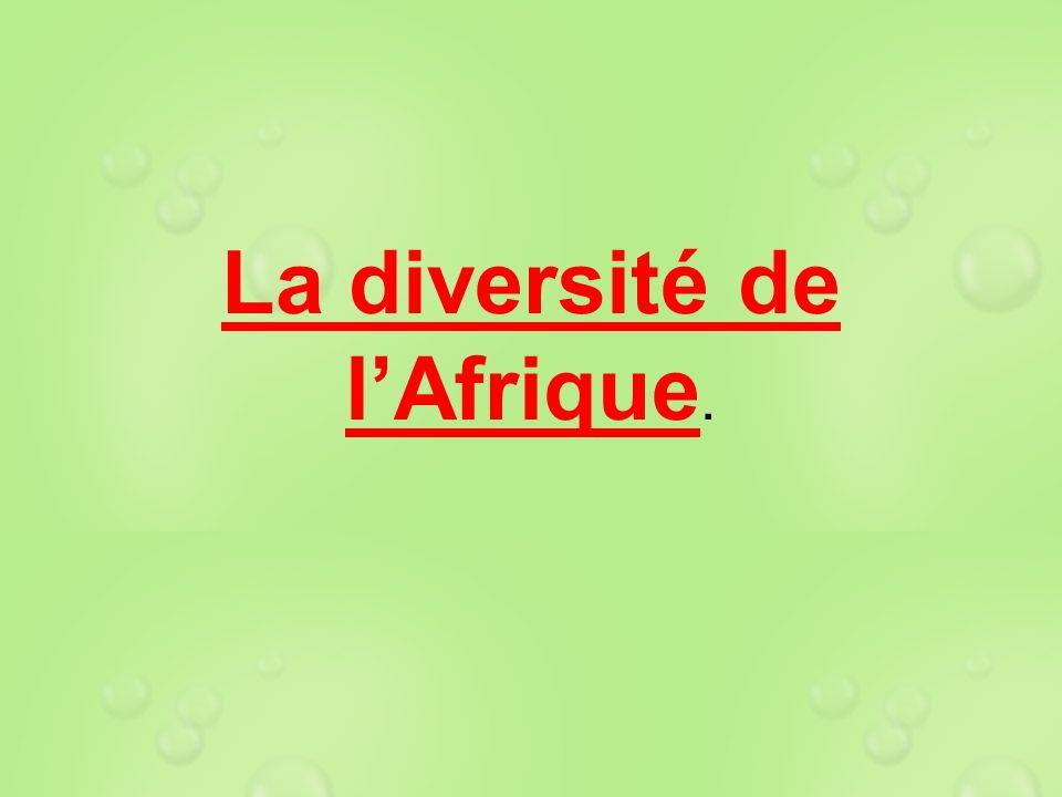 La diversité de lAfrique.