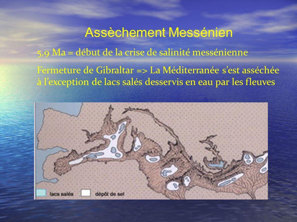 Assèchement Messénien 5,9 Ma = début de la crise de salinité messénienne Fermeture de Gibraltar => La Méditerranée sest asséchée à lexception de lacs