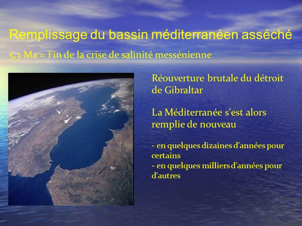 Remplissage du bassin méditerranéen asséché 5,3 Ma = Fin de la crise de salinité messénienne Réouverture brutale du détroit de Gibraltar La Méditerran