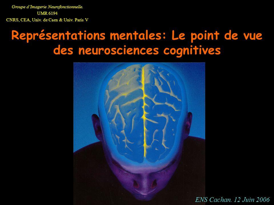 Groupe dImagerie Neurofonctionnelle. UMR 6194 CNRS, CEA, Univ. de Caen & Univ. Paris V Représentations mentales: Le point de vue des neurosciences cog