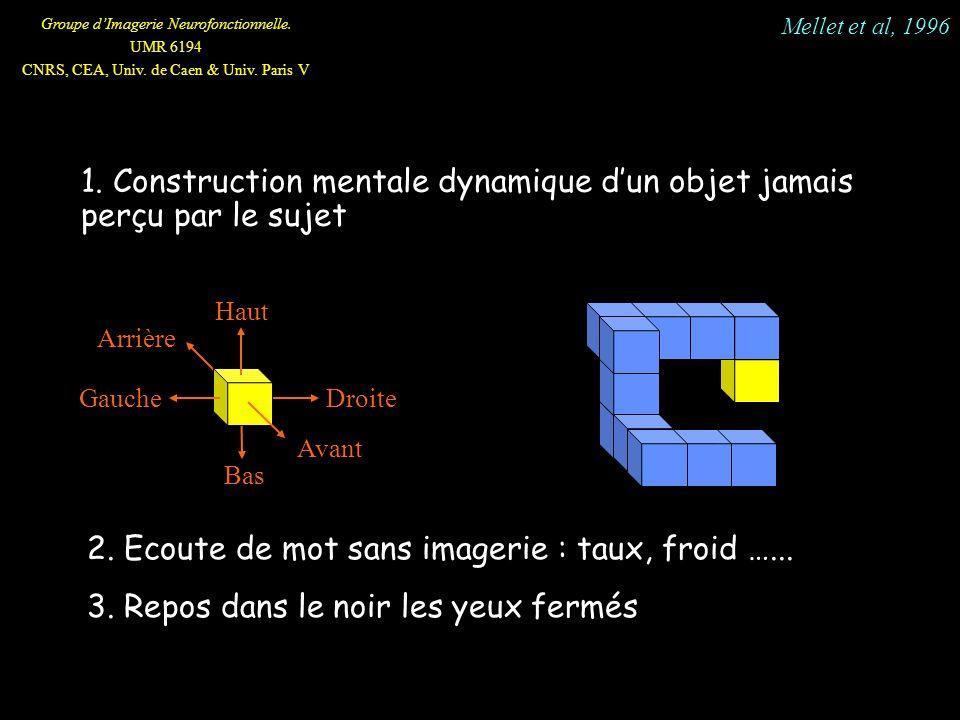 Groupe dImagerie Neurofonctionnelle. UMR 6194 CNRS, CEA, Univ. de Caen & Univ. Paris V 1. Construction mentale dynamique dun objet jamais perçu par le