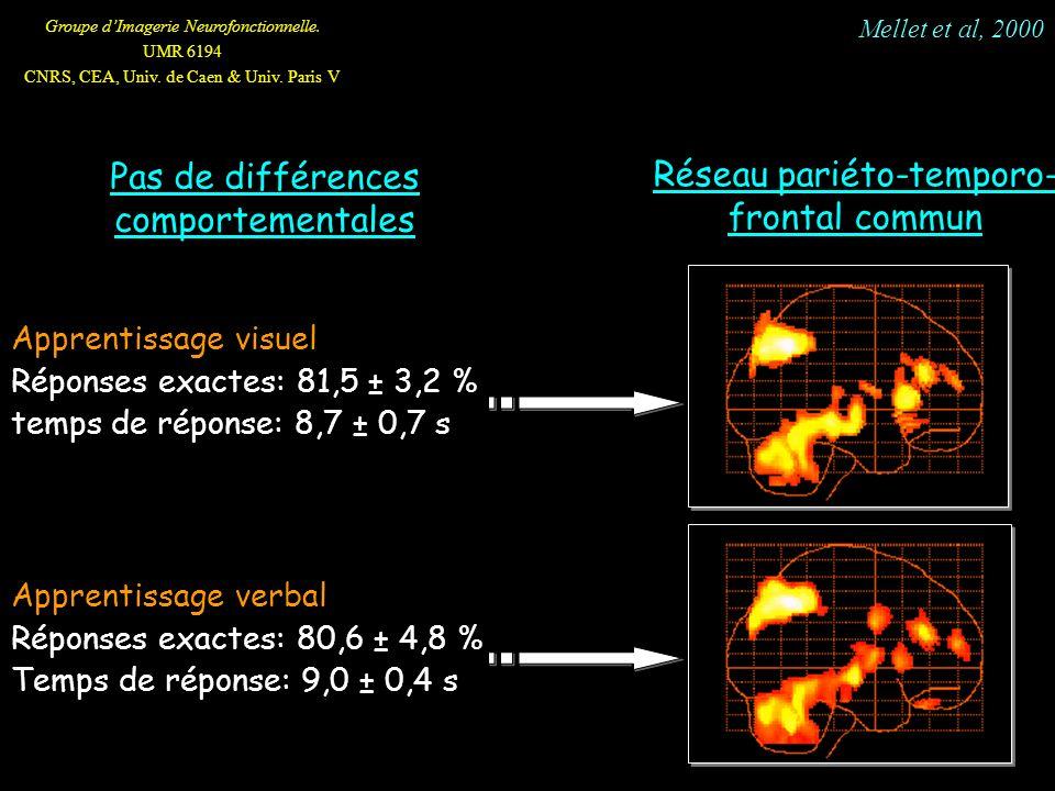 Groupe dImagerie Neurofonctionnelle. UMR 6194 CNRS, CEA, Univ. de Caen & Univ. Paris V Apprentissage visuel Réponses exactes: 81,5 ± 3,2 % temps de ré