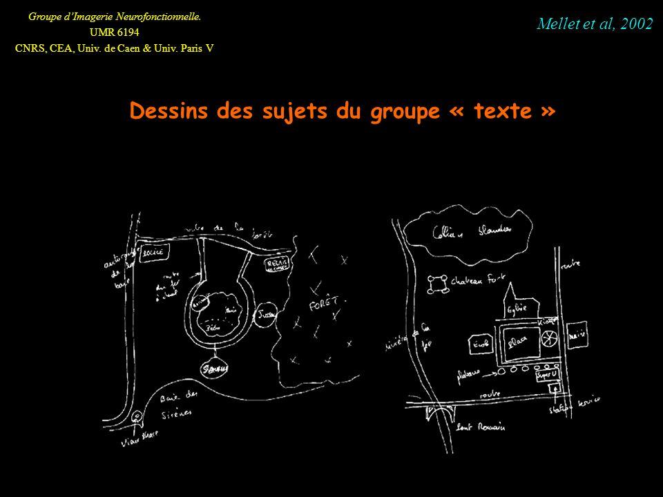 Groupe dImagerie Neurofonctionnelle. UMR 6194 CNRS, CEA, Univ. de Caen & Univ. Paris V Dessins des sujets du groupe « texte » Mellet et al, 2002
