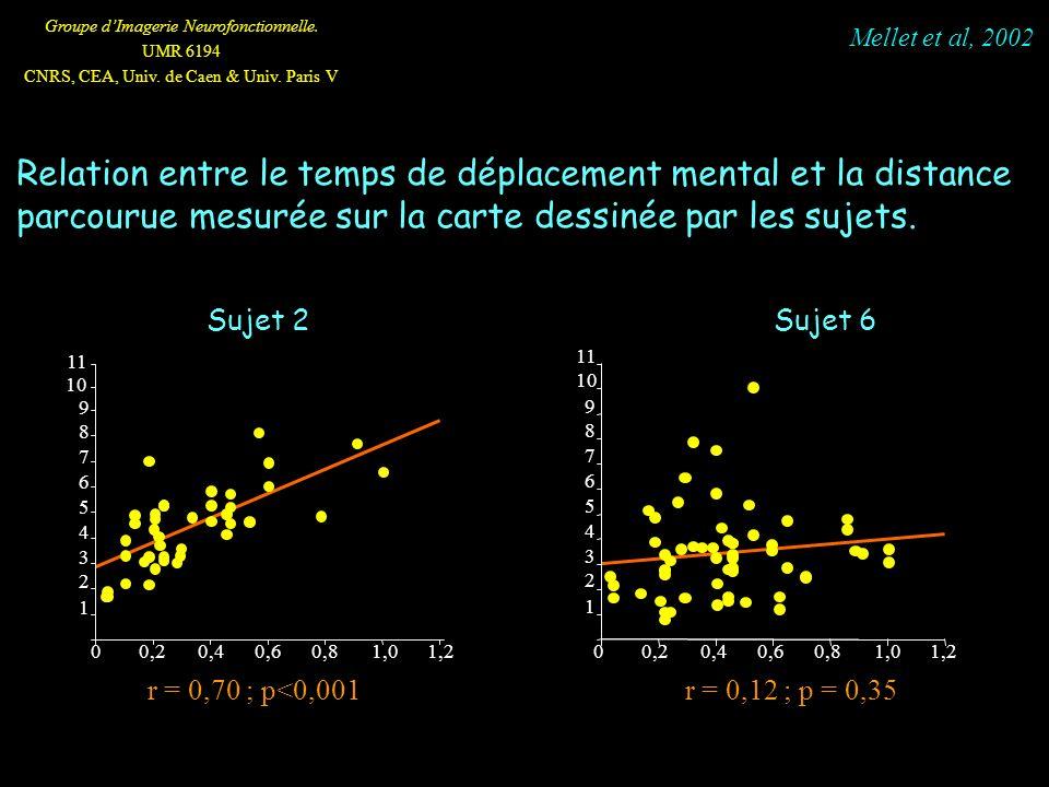 Groupe dImagerie Neurofonctionnelle. UMR 6194 CNRS, CEA, Univ. de Caen & Univ. Paris V 1 2 3 4 5 6 7 8 9 10 11 00,20,40,60,81,01,2 1 2 3 4 5 6 7 8 9 0