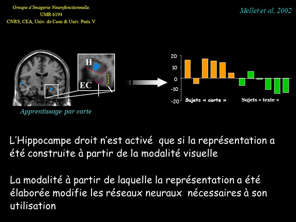 Groupe dImagerie Neurofonctionnelle. UMR 6194 CNRS, CEA, Univ. de Caen & Univ. Paris V Apprentissage par carte -20 -10 0 10 20 Sujets « carte » La mod