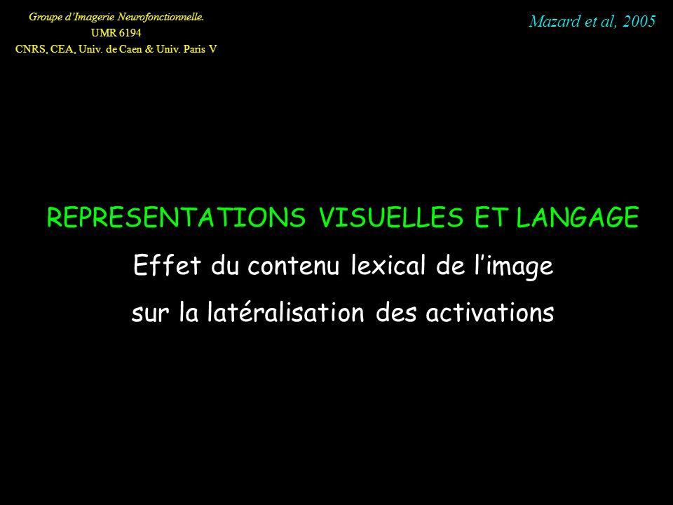 Groupe dImagerie Neurofonctionnelle. UMR 6194 CNRS, CEA, Univ. de Caen & Univ. Paris V REPRESENTATIONS VISUELLES ET LANGAGE Effet du contenu lexical d