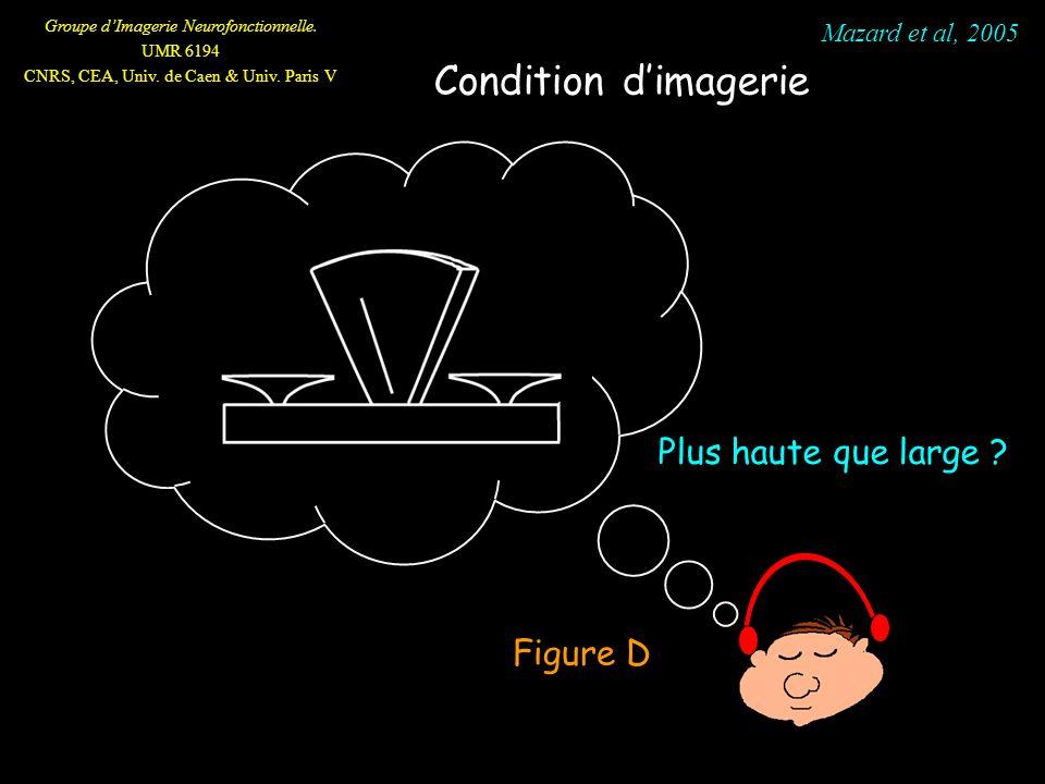 Groupe dImagerie Neurofonctionnelle. UMR 6194 CNRS, CEA, Univ. de Caen & Univ. Paris V Figure D Mazard et al, 2005 Condition dimagerie Plus haute que