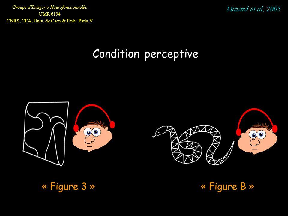 Groupe dImagerie Neurofonctionnelle. UMR 6194 CNRS, CEA, Univ. de Caen & Univ. Paris V Condition perceptive « Figure B » « Figure 3 » Mazard et al, 20