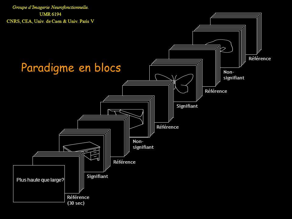 Groupe dImagerie Neurofonctionnelle. UMR 6194 CNRS, CEA, Univ. de Caen & Univ. Paris V Paradigme en blocs v Référence Non- signifiant v v Référence Si