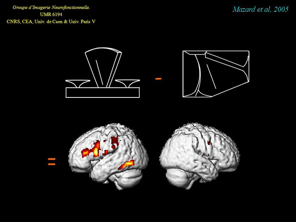 Groupe dImagerie Neurofonctionnelle. UMR 6194 CNRS, CEA, Univ. de Caen & Univ. Paris V - = Mazard et al, 2005