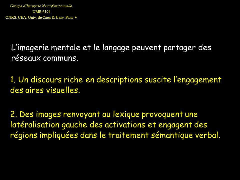 Groupe dImagerie Neurofonctionnelle. UMR 6194 CNRS, CEA, Univ. de Caen & Univ. Paris V Limagerie mentale et le langage peuvent partager des réseaux co