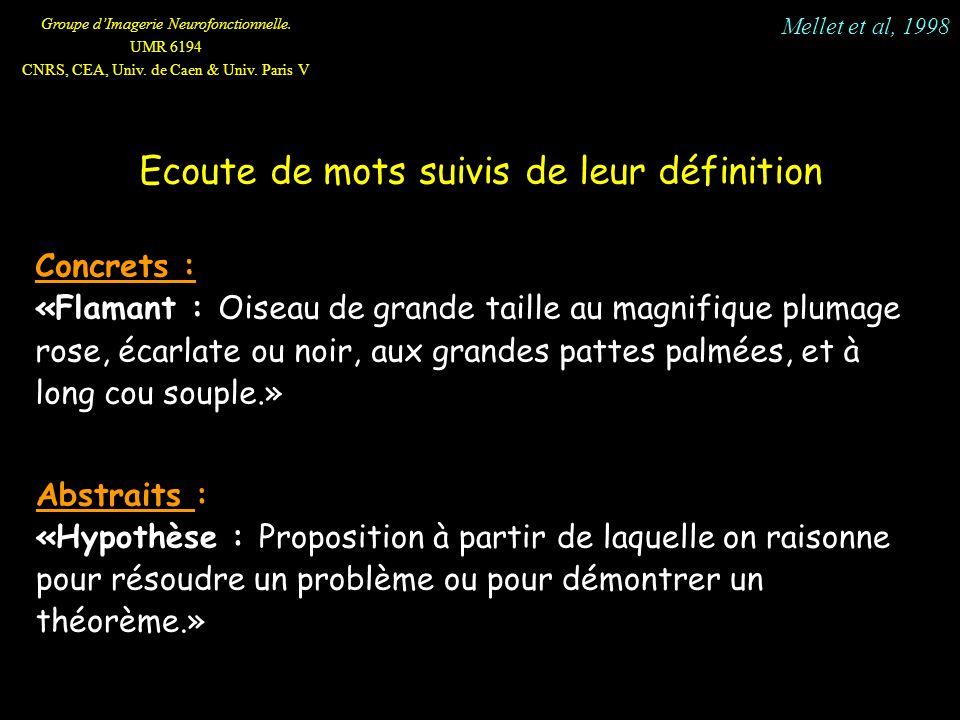 Groupe dImagerie Neurofonctionnelle. UMR 6194 CNRS, CEA, Univ. de Caen & Univ. Paris V Ecoute de mots suivis de leur définition Concrets : «Flamant :