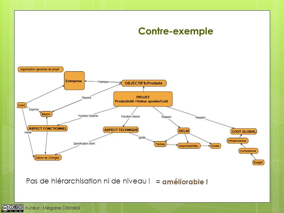 Auteur : Mégane Cristalidi Pas de hiérarchisation ni de niveau ! Contre-exemple = améliorable !
