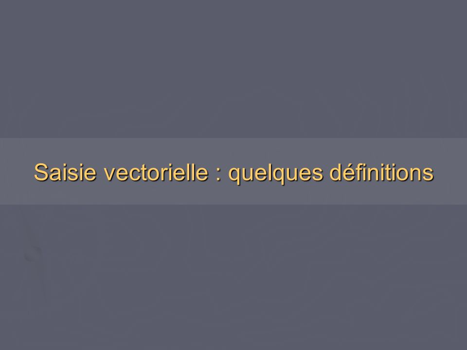 Saisie vectorielle : quelques définitions