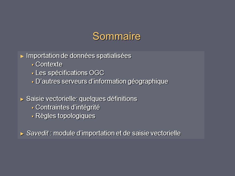 Sommaire Importation de données spatialisées Contexte Contexte Les spécifications OGC Les spécifications OGC Dautres serveurs dinformation géographiqu