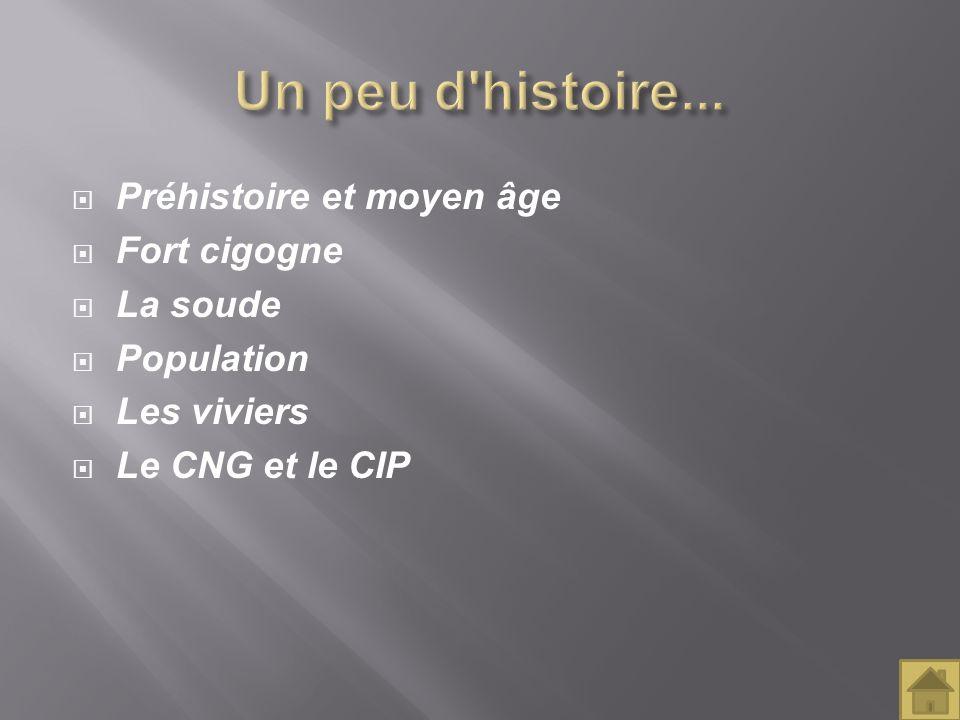Préhistoire et moyen âge Fort cigogne La soude Population Les viviers Le CNG et le CIP