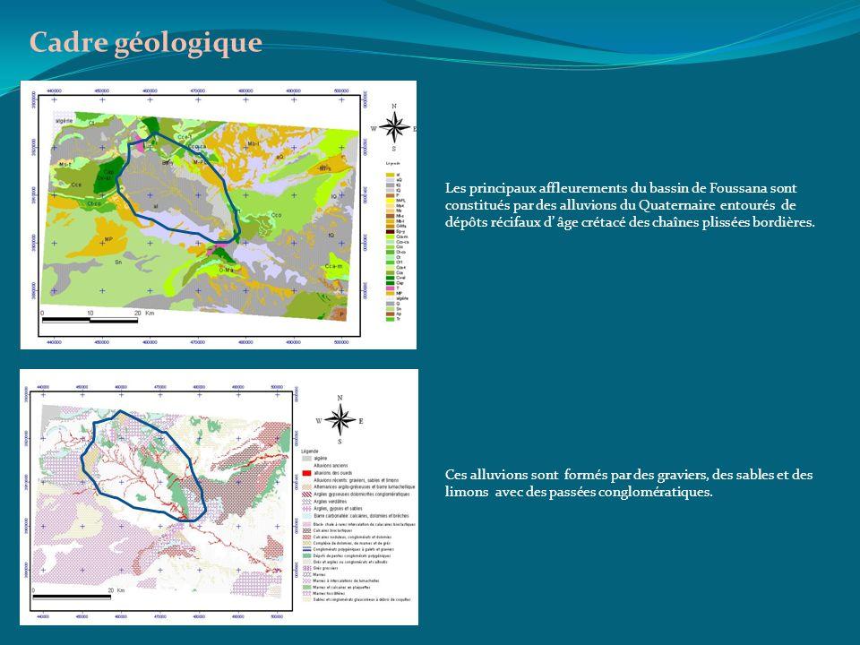 Cadre géologique Les principaux affleurements du bassin de Foussana sont constitués par des alluvions du Quaternaire entourés de dépôts récifaux d âge