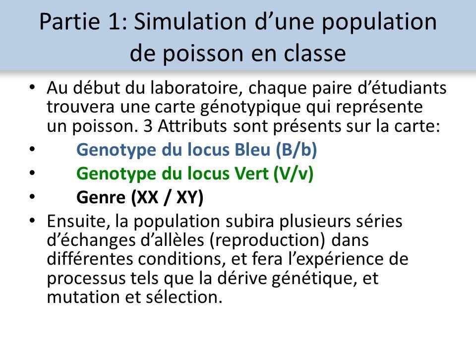Partie 1: Simulation dune population de poisson en classe Au début du laboratoire, chaque paire détudiants trouvera une carte génotypique qui représen