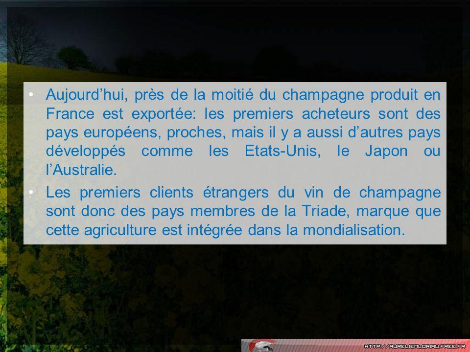 Aujourdhui, près de la moitié du champagne produit en France est exportée: les premiers acheteurs sont des pays européens, proches, mais il y a aussi