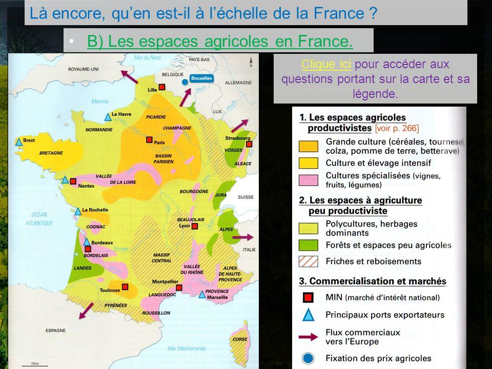 Là encore, quen est-il à léchelle de la France ? B) Les espaces agricoles en France. Clique ici pour accéder aux questions portant sur la carte et sa