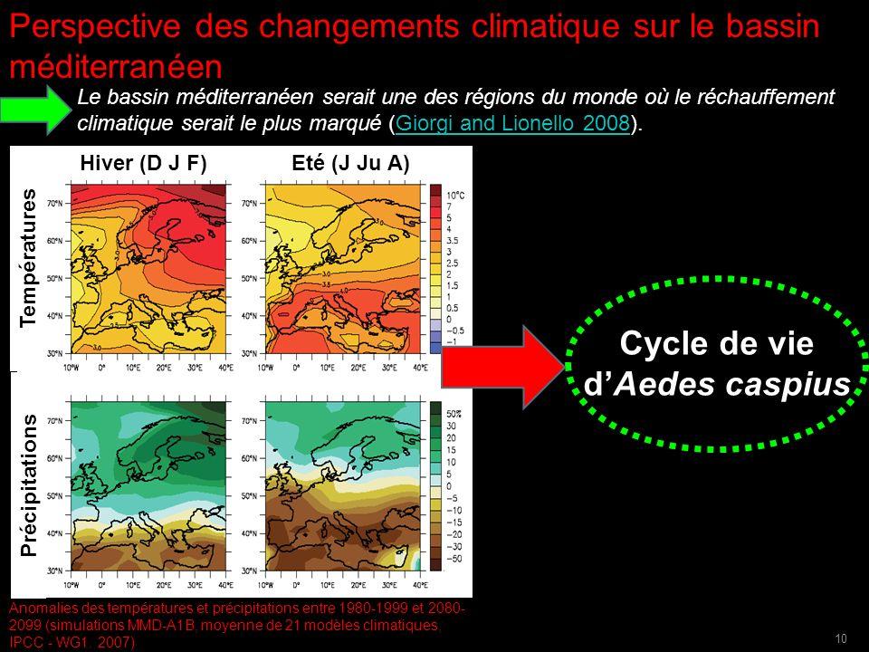 Hiver (D J F) Eté (J Ju A) Températures Précipitations Anomalies des températures et précipitations entre 1980-1999 et 2080- 2099 (simulations MMD-A1B