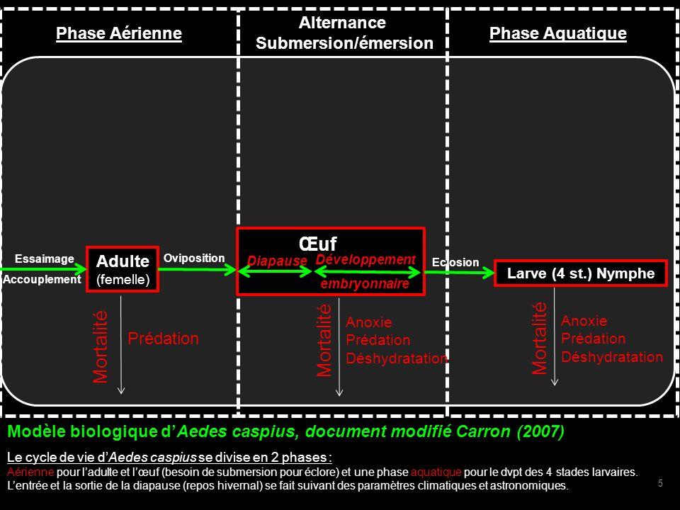 Adulte (femelle) Larve (4 st.) Nymphe Mortalité Eclosion Oviposition Mortalité Prédation Mortalité Anoxie Prédation Déshydratation Diapause Anoxie Pré