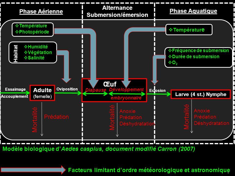 Redéfinition de la limite estivale Détermination en chaque point de la carte dun « été » comme étant la succession des 3 ou 6 mois les plus secs Notion de saisonnalité indépendante des dates calendaires 1) A ctualisation à haute résolution des cartes du climat méditerranéen 2) Proposition dune définition multi-auteur de lECM 3) Evolution de lECM suivant les scénarii du GIEC 37
