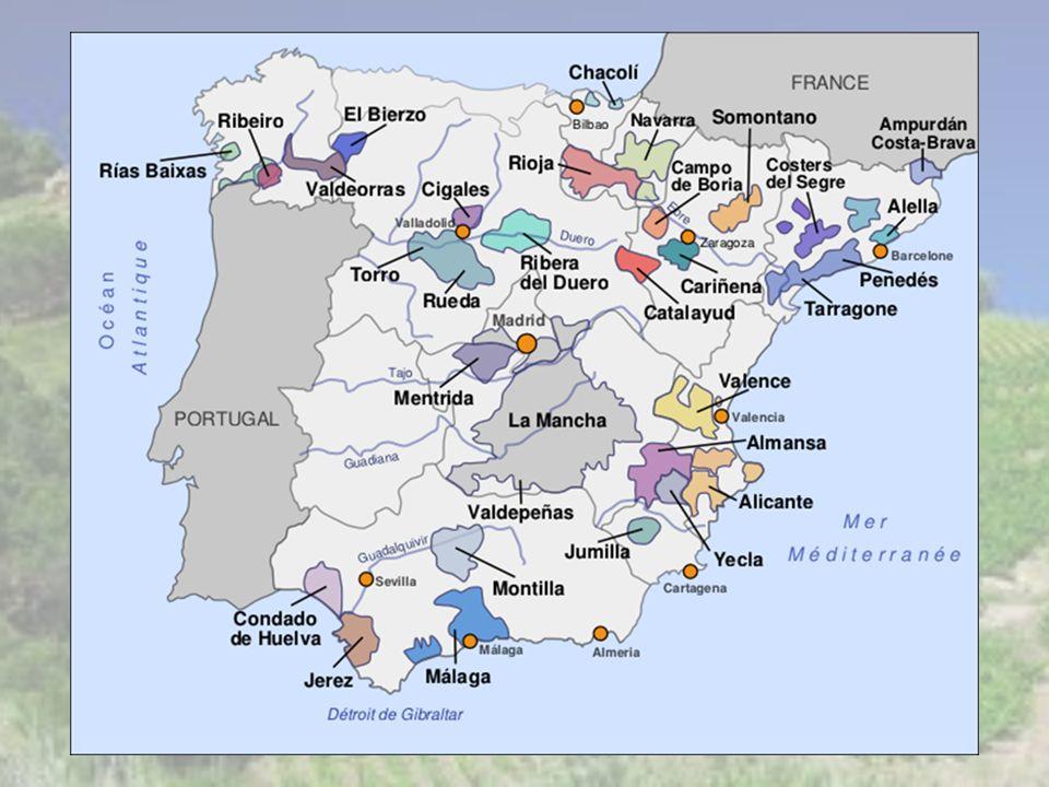 Autres produits autour du vin… Le Xérès Impossible de parler de l Espagne sans parler du plus célèbre des vins vinés, le Jerez (ou Xérès).