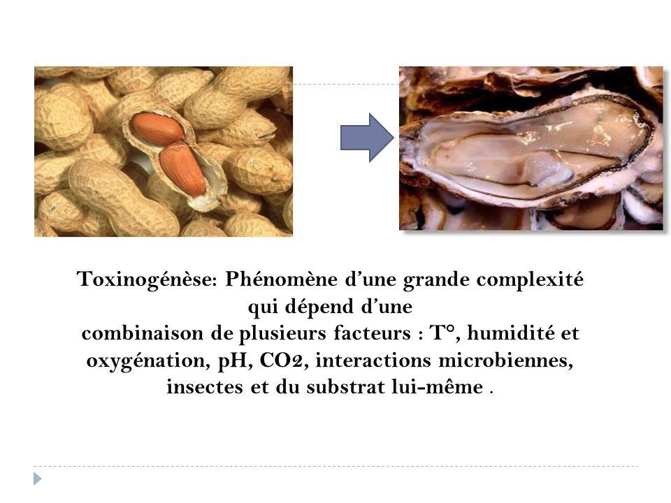 Toxinogénèse: Phénomène dune grande complexité qui dépend dune combinaison de plusieurs facteurs : T°, humidité et oxygénation, pH, CO2, interactions