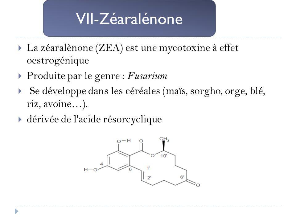 La zéaralènone (ZEA) est une mycotoxine à effet oestrogénique Produite par le genre : Fusarium Se développe dans les céréales (maïs, sorgho, orge, blé