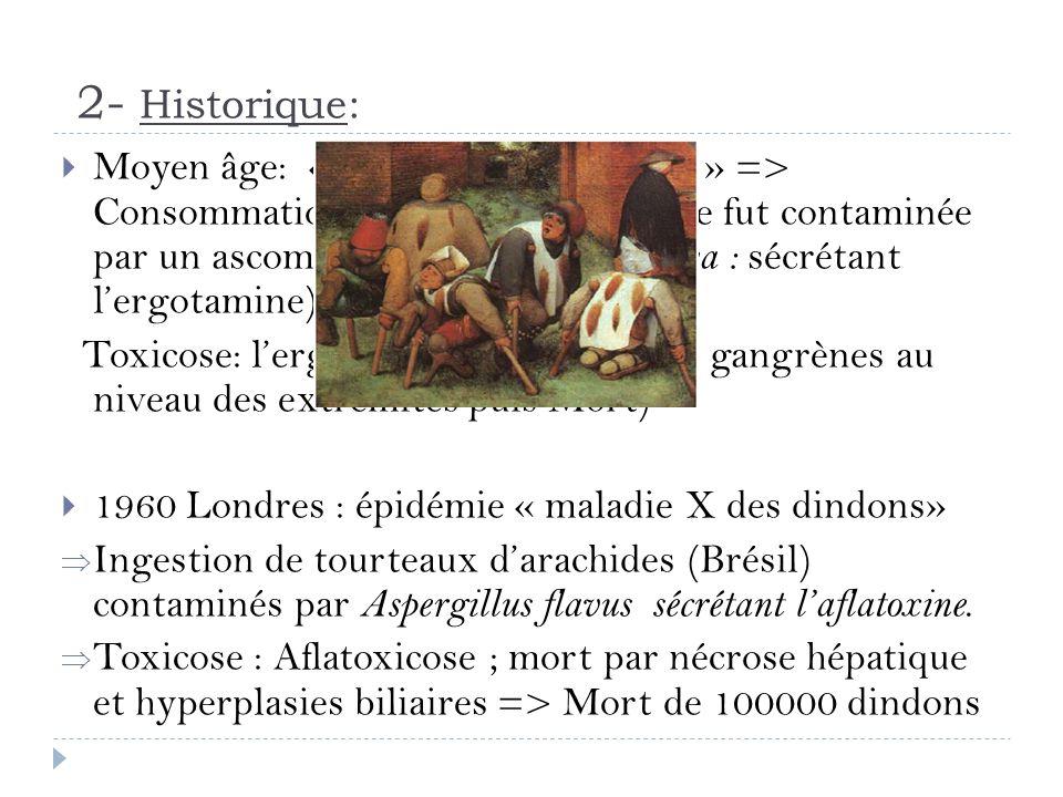 2- Historique: Moyen âge: « Feu de Saint Antoine » => Consommation de pain dont la farine fut contaminée par un ascomycète ( Claviceps purpurea : sécr