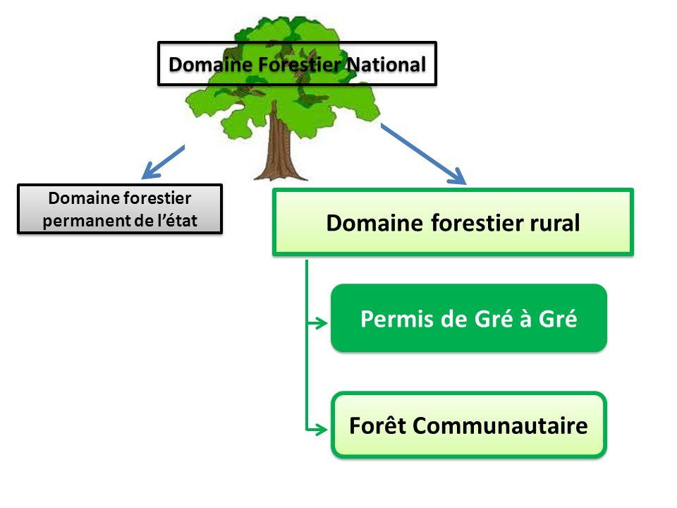 Forets domaniales productives enregistrées Domaine forestier rural Forets domaniales classées Domaine forestier