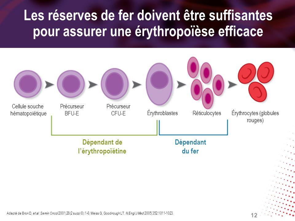 Les réserves de fer doivent être suffisantes pour assurer une érythropoïèse efficace Adapté de Bron D, et al. Semin Oncol 2001;28(2 suppl 8):1-6; Weis