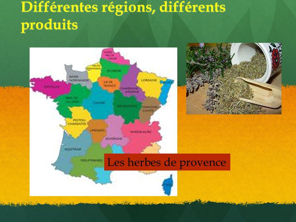 Différentes régions, différents produits Les herbes de provence