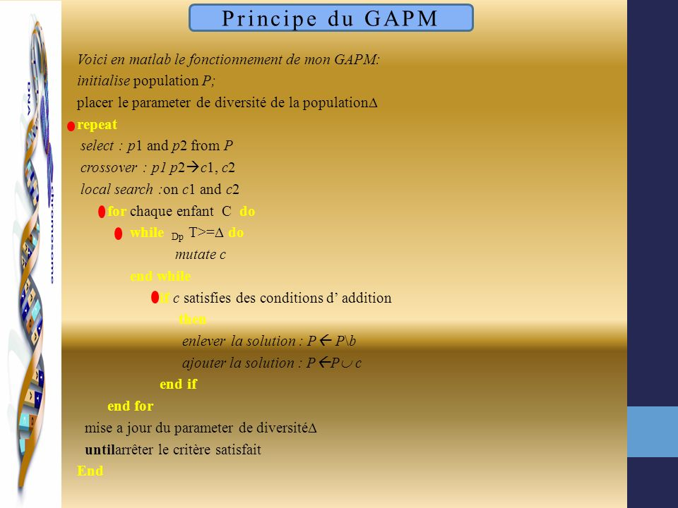 Voici en matlab le fonctionnement de mon GAPM: initialise population P; placer le parameter de diversité de la population repeat select : p1 and p2 fr