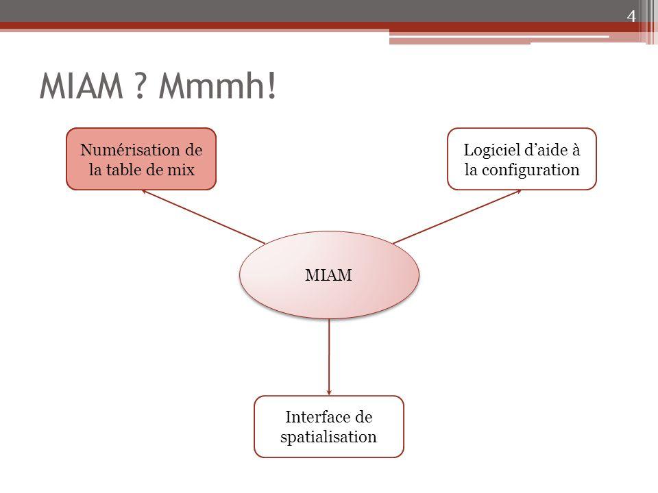 Deux programmes 25 Spatialization Config Spatialization Live Menu principal Affectation des couleurs Gestion des couleurs Spatialisation du son Menu principal Spatialisation du son