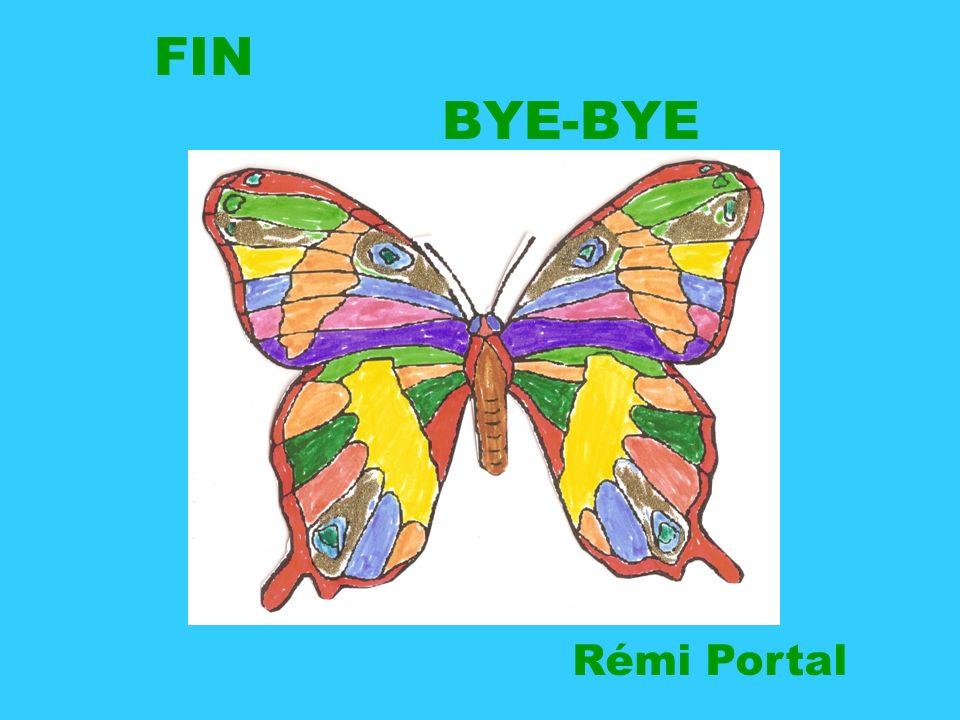 FIN BYE-BYE Rémi Portal