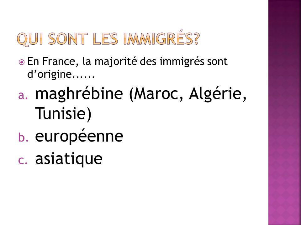 Les immigrés, les étrangers nés en France et les descendants directs dimmigrés représentent une population de 10,1 millions soit près de 16% de la population totale (DOM inclus) en 2004.